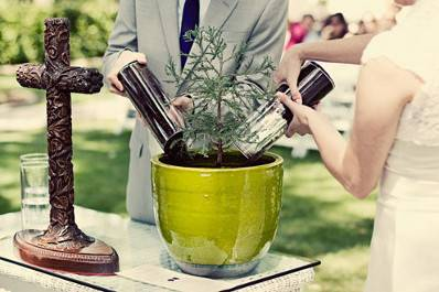 tree-planting-ceremony-wedding1