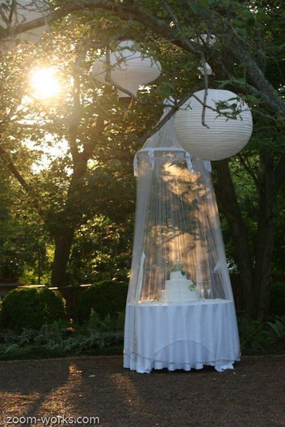 Outdoor weddings archives mother of the bride innovative wedding ideas junglespirit Image collections